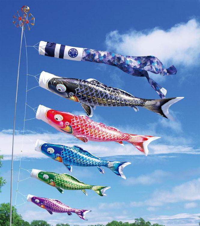 大型鯉のぼり「千寿」について