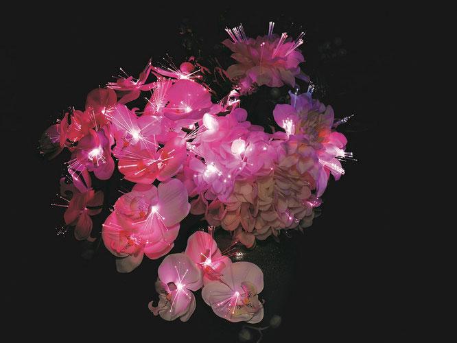 ルミナス 胡蝶蘭 葵 光触媒 明かりを点ける