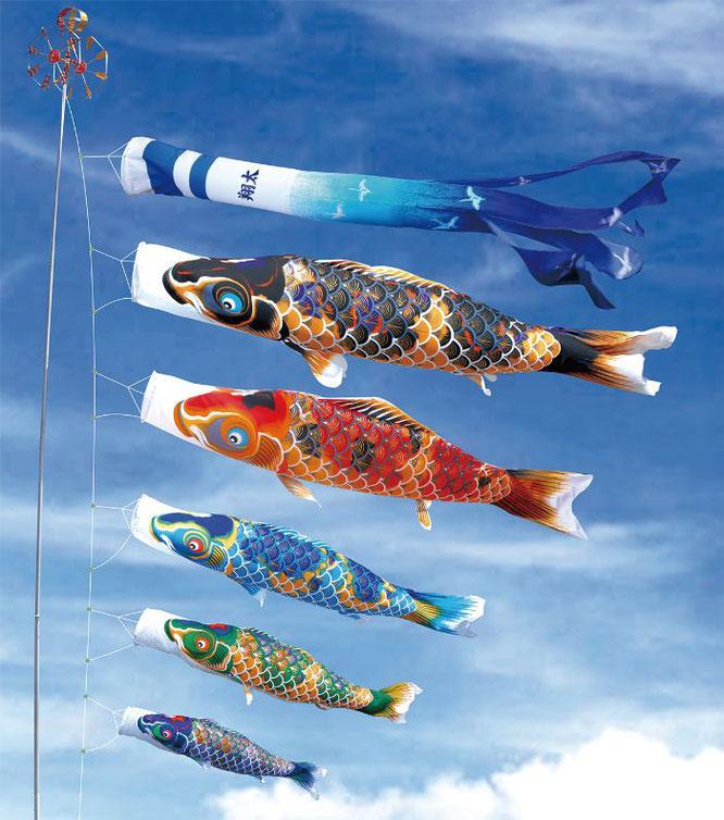 大型鯉のぼり「京錦」