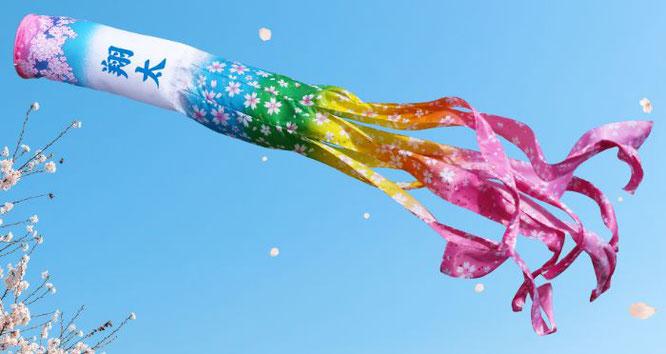 鯉のぼり「桜風吹流し」