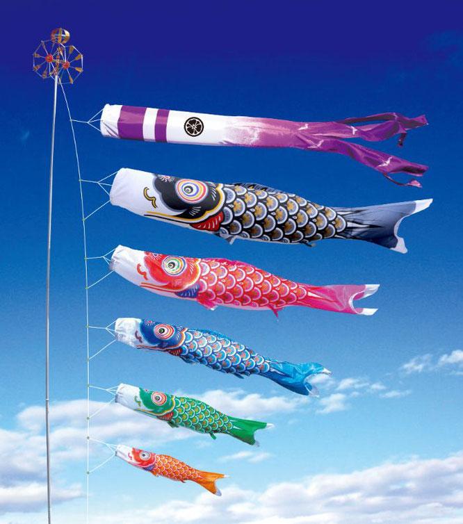 大型鯉のぼり「大翔」