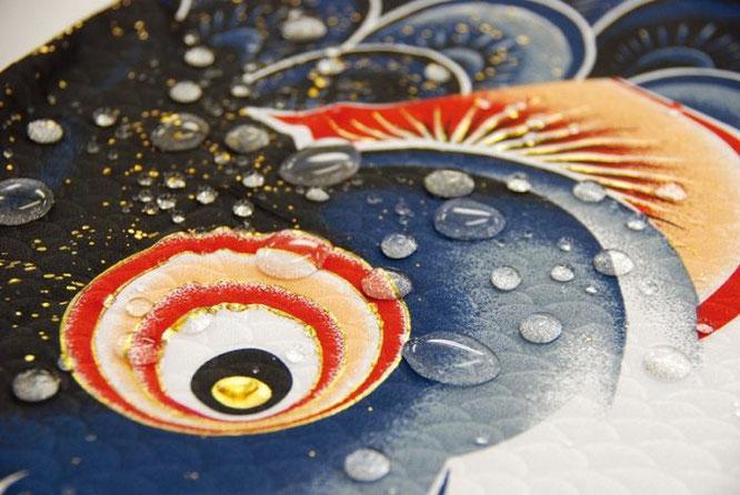 鯉のぼり 風舞い 撥水イメージ