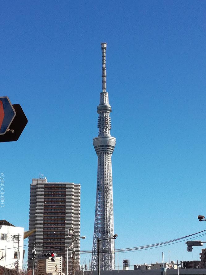 Der Skytree von Asakusa-ku aus betrachtet
