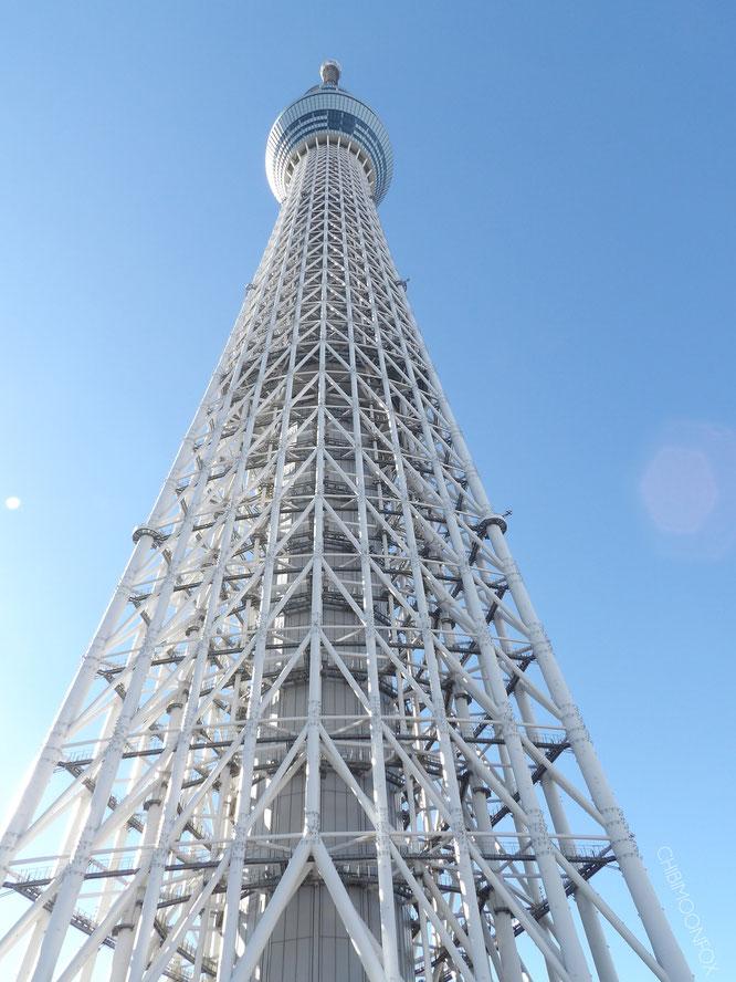 Das imposante Stahlskelett des Skytrees von unten