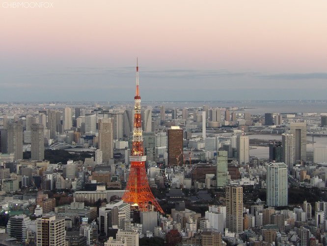 Tokyo Tower after the sun set