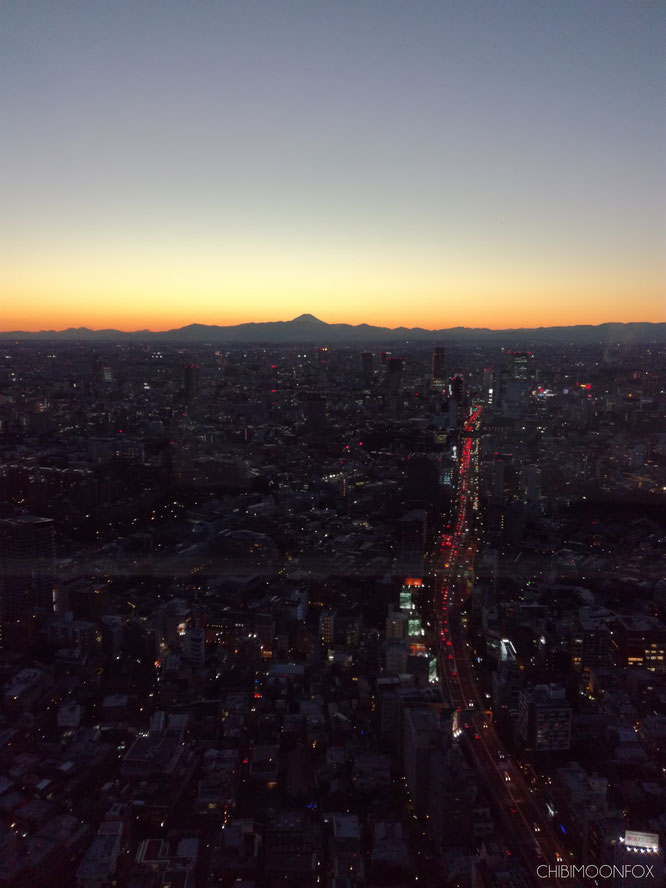 View from the Observatory Deck after the sun set behind Mt. Fuji
