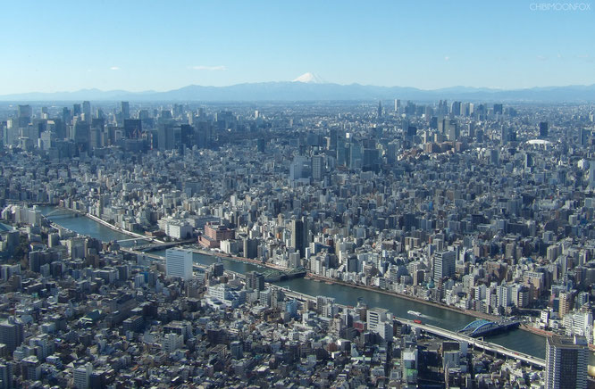 Blick in Richtung Tokyo Zentrum mit Mt. Fuji in der Ferne