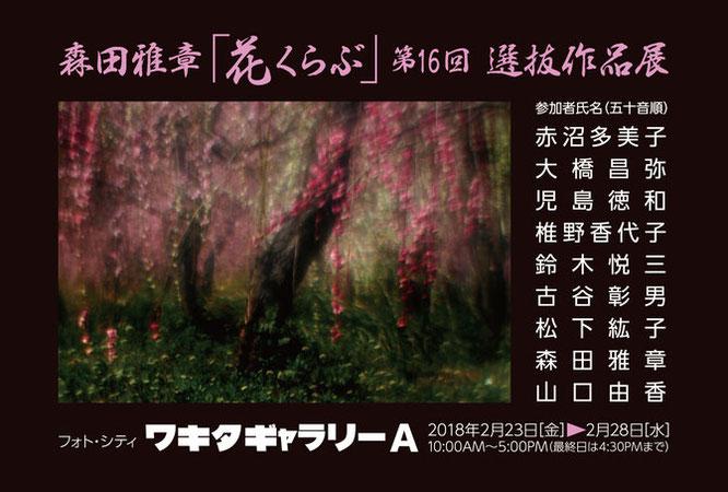 森田雅章「花くらぶ」第16回選抜作品展 2018年