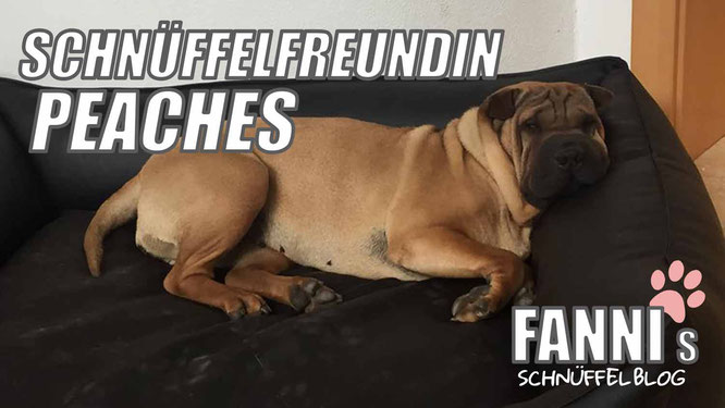 Peaches fannis blog