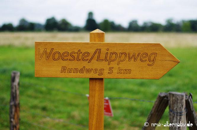 Schild mit Runderwanderweg an der Woeste bei Bad Sassendorf.