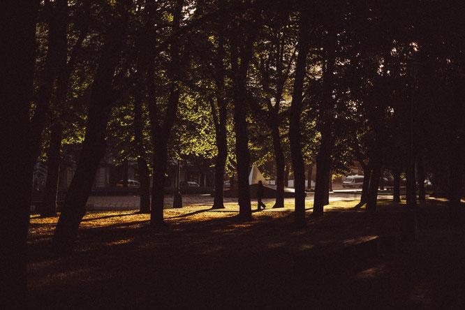 Eine Frau spaziert alleine durch einen Park.