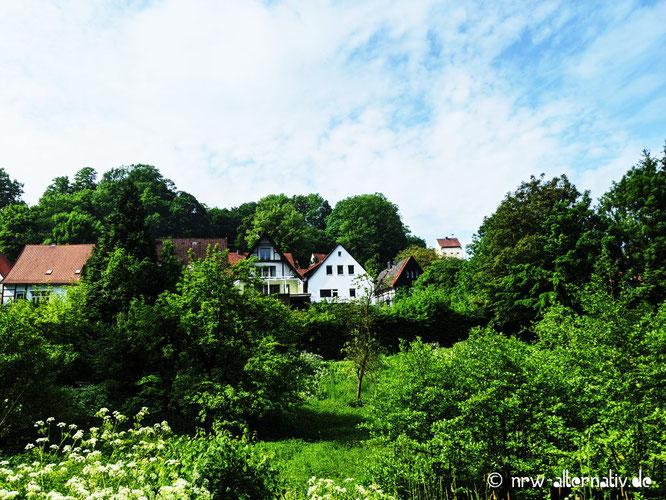Bäume und Häuser und blauer Himmel in Tecklenburg.