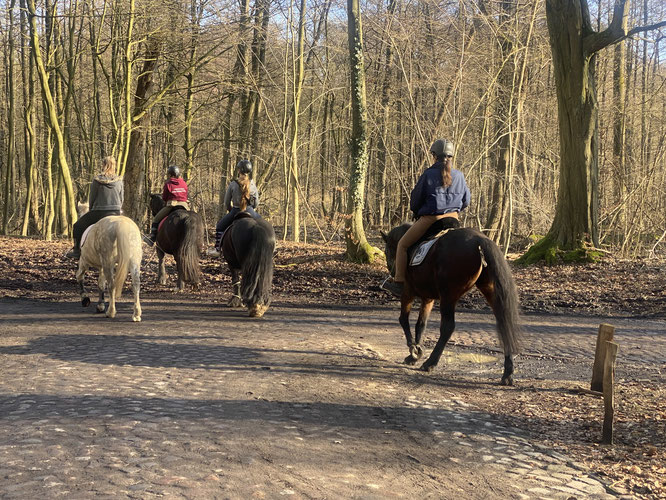 Reiter im Wohldorfer Wald