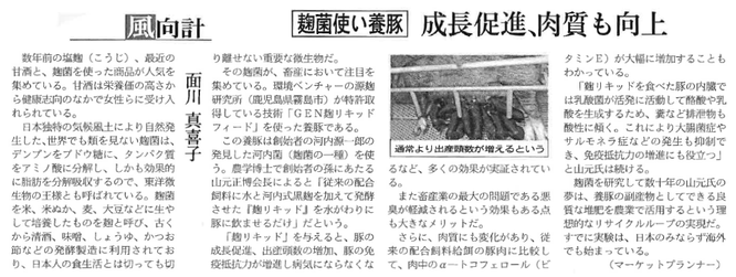 茶麹 源麹研究所 河内菌