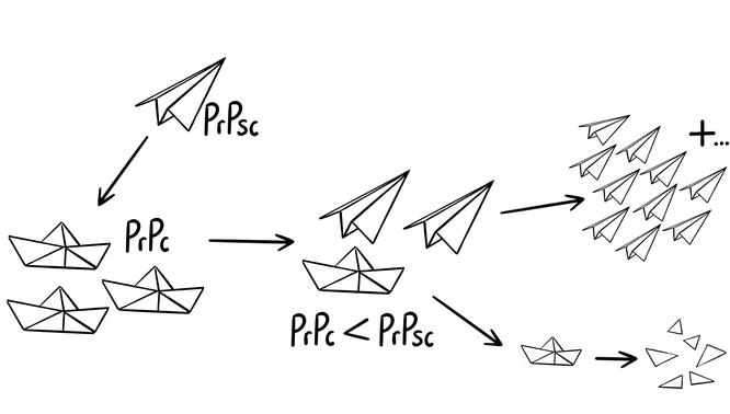 Tafelbild das die Wirkungsweise von Prionen bei Prionenerkrankungen wie Kuru und BSE visualisiert.