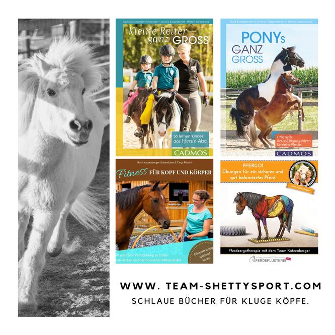 Kleine Reiter ganz groß - so lernen Kinder das Pferde-Abc, Ponys ganz groß - Originelle Beschäftigungsideen für kleine Pferde; Fitness für Kopf und Körper: Gehirnjogging und Muskeltraining für Dein Pferd; PFERGO - Übungen für ein sicheres Pferd