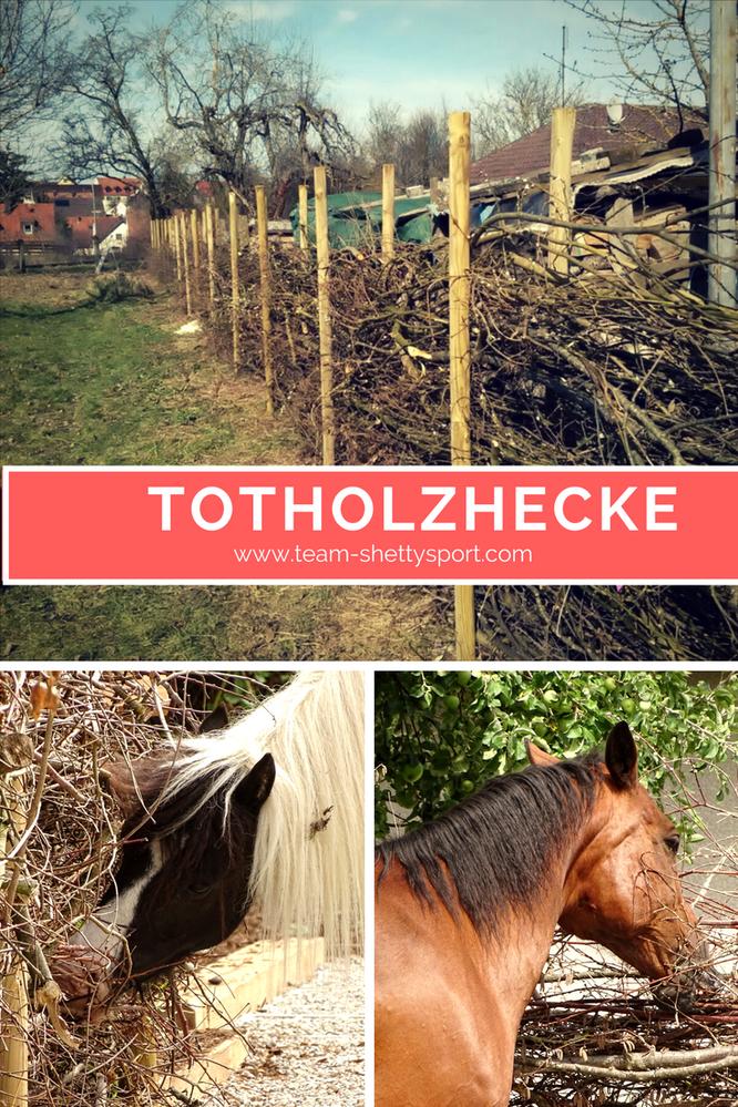 Totholzhecke für Pferde im Offenstall