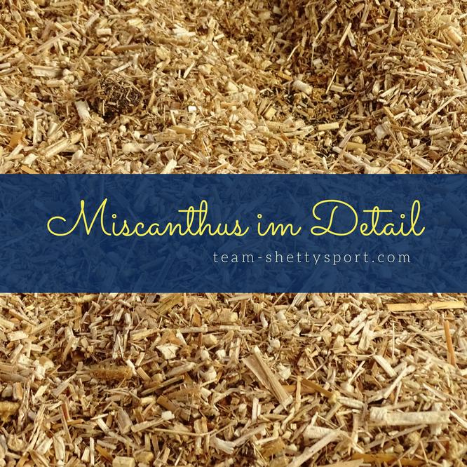 Miscanthus Elefantengras Pferdeeinstreu Offenstall