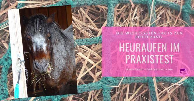 Pferdefütterung: Heuraufen im Praxistest! Von Heunetzen zu Heuraufen - alles was Du über die Heufütterung wissen musst.