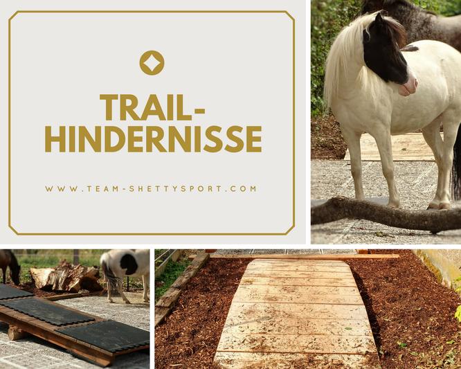 Paddock Trail, Gestaltung, Hindernisse, Pferdewippe, Brücke
