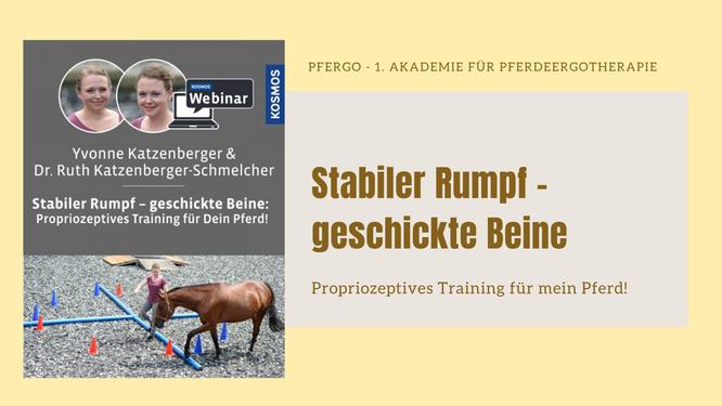 Stabiler Rumpf - geschickte Beine: Propriozeptives Training für mein Pferd!