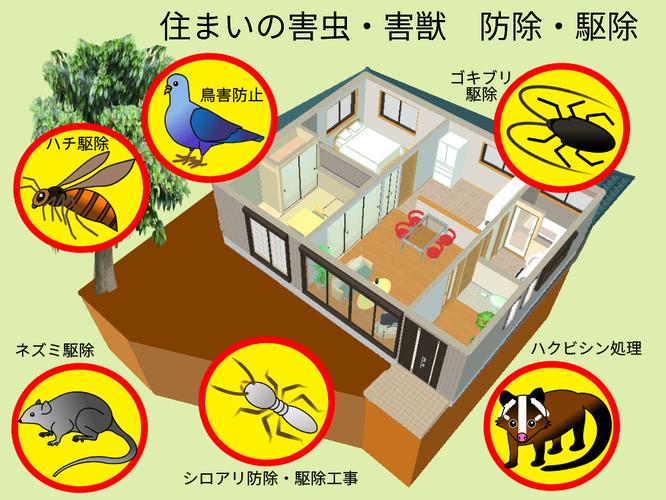 住まいの害虫害獣防除駆除