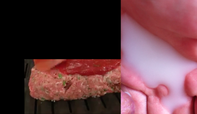 milk.scar.fleisch (2015), still from video with sound. looped