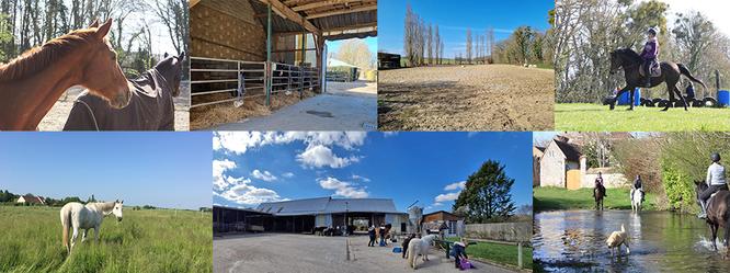 L'écurie des 2R, pension pour chevaux et écurie de propriétaires à Thorigny sur Oreuse