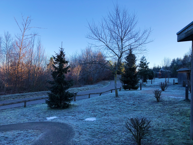 Morgens wenn man aus dem Haus kommt... wunderschön!