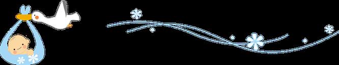 飛んでいくコウノトリのイラスト