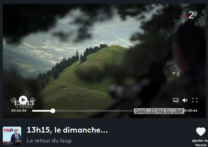 """Documentaire riche et passionnant sur France 2 dimanche dernier: """"le retour du loup"""". à regarder en replay ici (clic sur la photo)"""
