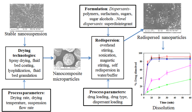 Overview graphic with process parameters, drying technologies, and formulations for nanocomposite microparticles