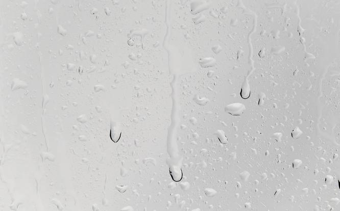 Feuchtigkeit in der Wohnung (z.B. am Fenster oder an den Wänden)