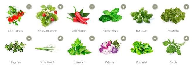 Quelle: www.emsa.com - Nicht nur Kräuter können angebaut werden ;) ...
