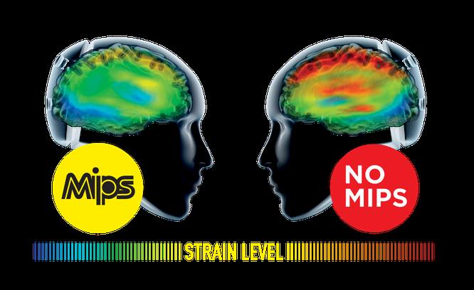 Helme mit dem MIPS® Brain Protection System sind inzwischen Standard