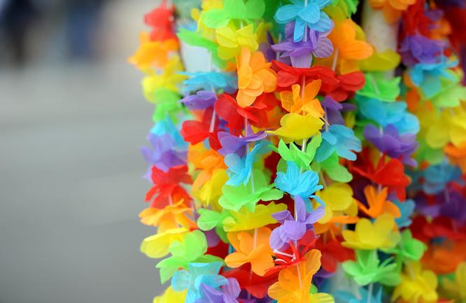 Bild: Blumenketten in Regenbogenfarben