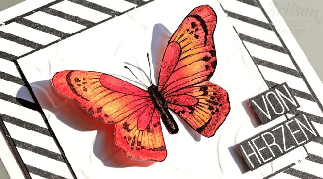 Karte-Schmetterling-Stampinup