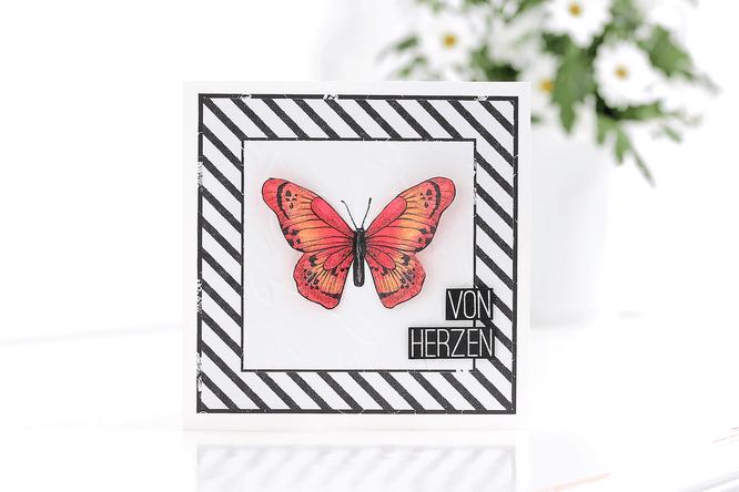 Karte mit Stampin´ Up! Designerpapier Schmetterlingsveilfalt