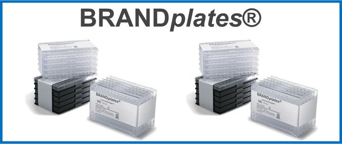 BRANDplates®