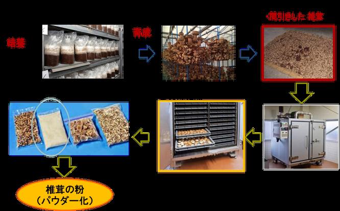 おが粉と栄養体から生産する菌床椎茸と「芽」