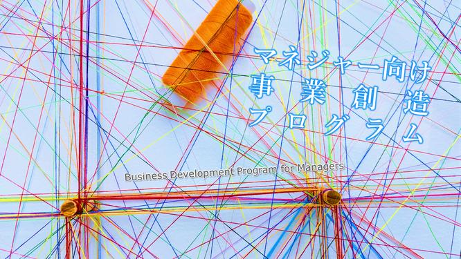 マネジャー向け事業創造プログラムのイメージ画像