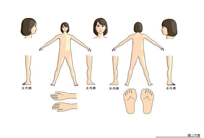 ツボ人体図