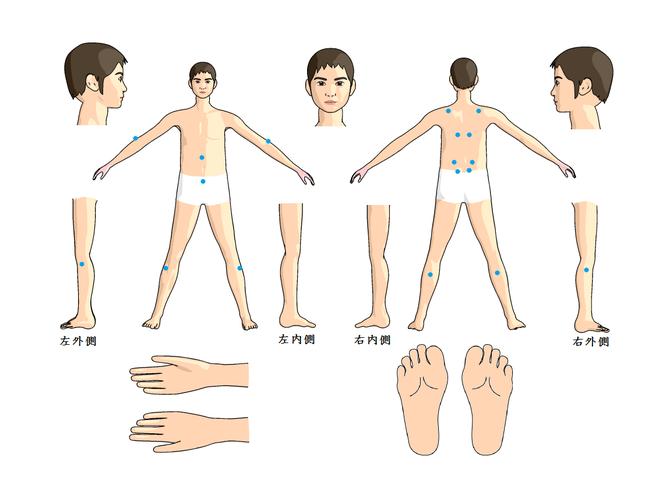 当院で用いる頻度が多い腰痛の基本穴