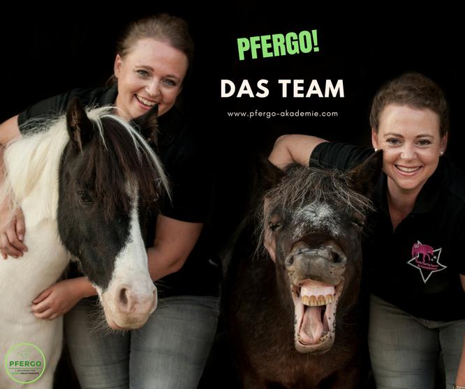 PFERGO - 1. Akademie für Pferdeergotherapie. Werde Pferdeergotherapeut und lerne, Pferde sinnvoll zu fördern!