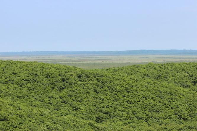 釧路湿原 北斗展望台撮影