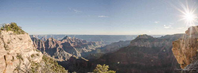 Panorama View at the Grand Canyon from the North Rim