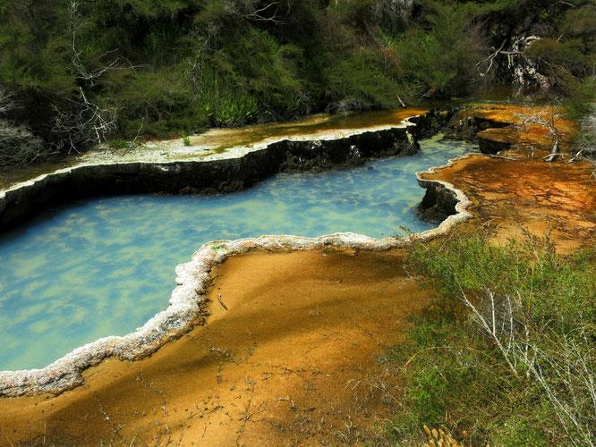 Das Waimangu Volcanic Valley