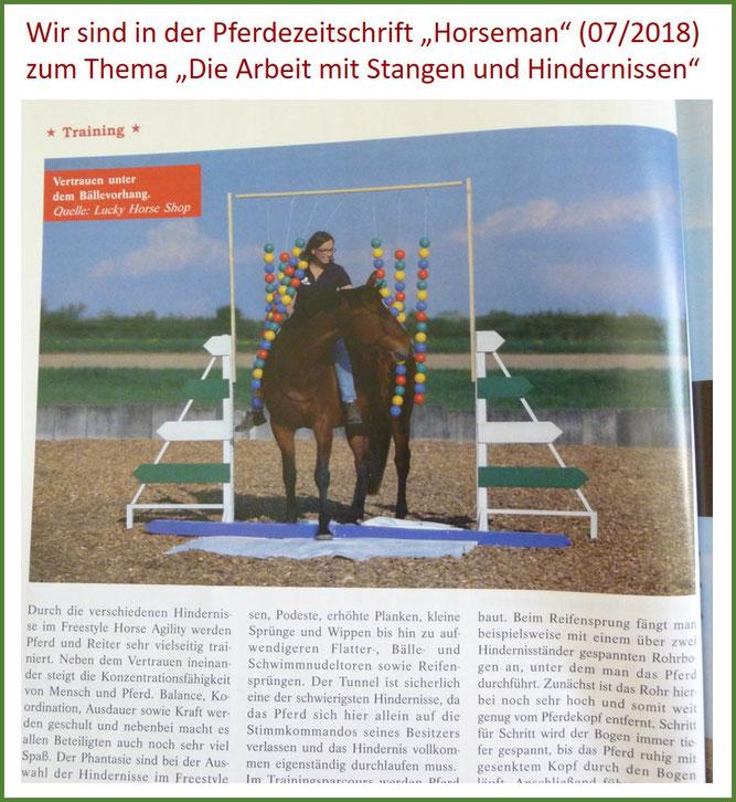 Pferdezeitschrift, Artikel, Horseman, Gelassenheitstraining mit Hindernissen, Bälletor, freies Reiten