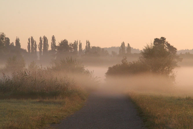 Morgenstimmung im Oktober- Foto: NABU/R. Ratzbor