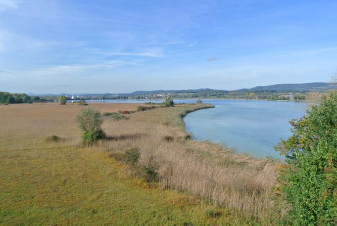 Luftbild Halbinsel Mettnau